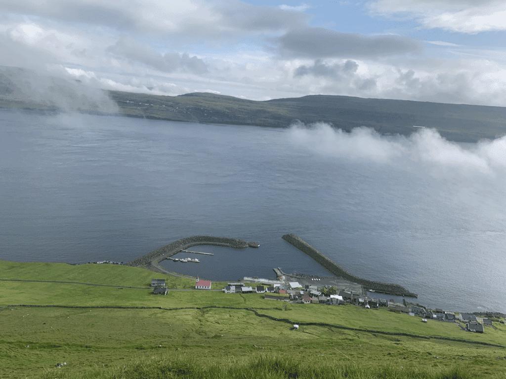 hestur færøerne